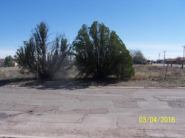 950 W. Mccourt, Willcox, AZ 85643 Photo 4