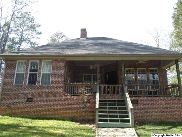 685 County Rd. 642, Cedar Bluff, AL 35959 Photo 12