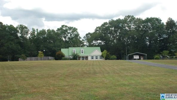 1291 Priebes Mill Rd., Oxford, AL 36203 Photo 88