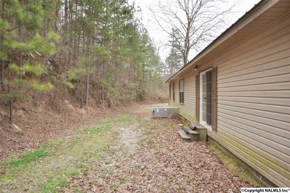 195 County Rd. 728, Cedar Bluff, AL 35959 Photo 30