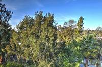 Home for sale: 6126 El Tordo, Rancho Santa Fe, CA 92067