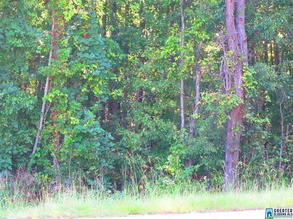 26 Acres Co Rd. 15, Wedowee, AL 36278 Photo 4