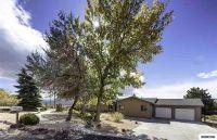 Home for sale: 1071 S. Sutro Terrace, Carson City, NV 89706