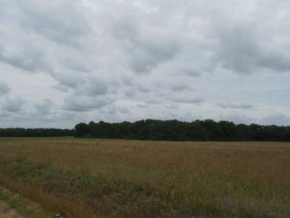 7.8acres Hardy Rd., Rehobeth, AL 36301 Photo 11