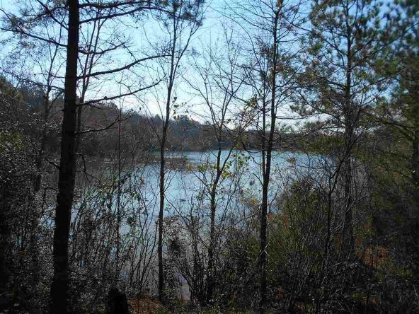 16.9 Acres Private Rd. 1363, Ariton, AL 36311 Photo 20
