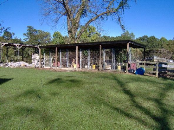 7366 Hwy. 51 S., Midway, AL 36053 Photo 35