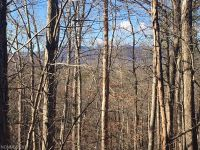 Home for sale: Lot 222 Starling Terrace, Lake Lure, NC 28746