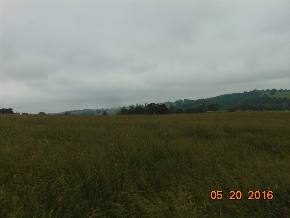 80 County Rd. 638, Green Forest, AR 72638 Photo 16