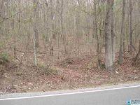 Home for sale: Co Rd. 26, Blountsville, AL 35031