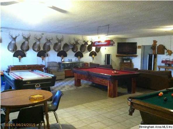 22591 Hwy. 5, West Blocton, AL 35184 Photo 10