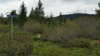 Home for sale: Lot 17 Forest Highlands Sub, Boise, ID 83716