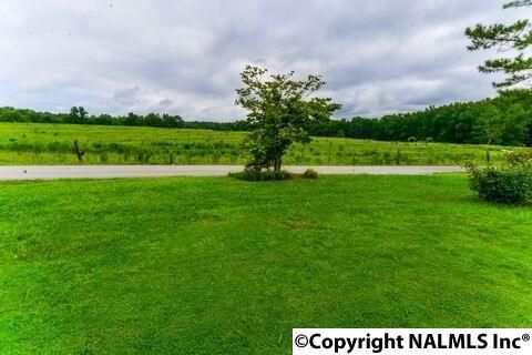 65 Newton Rd., Hartselle, AL 35640 Photo 32