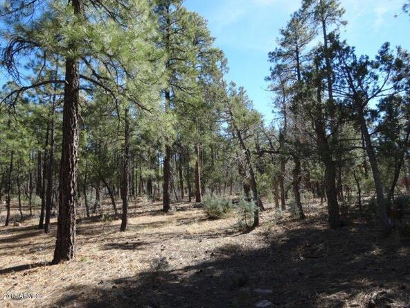 1090 W. Sadler Ln., Lakeside, AZ 85929 Photo 8