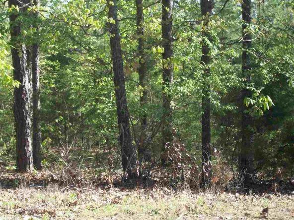 44 Pine Trail, Higden, AR 72067 Photo 3
