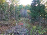 Home for sale: Lot 6 Pioneer Path, Aurora, ME 04408