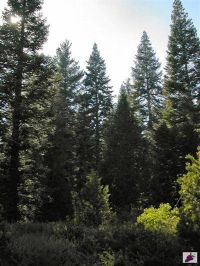 Home for sale: 0 Dinkey Creek Rd., Shaver Lake, CA 93602