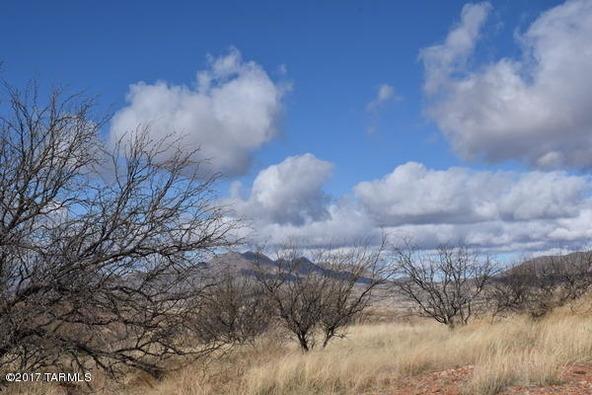 58 Circulo Montana, Patagonia, AZ 85624 Photo 15