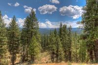 Home for sale: Lot 7 Four Pines Rd., Idaho City, ID 83631