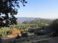 Home for sale: 1033 Sandalwood Dr., Murphys, CA 95247