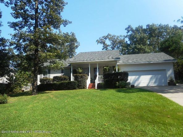 389 Royal Loop, Winfield, AL 35594 Photo 9