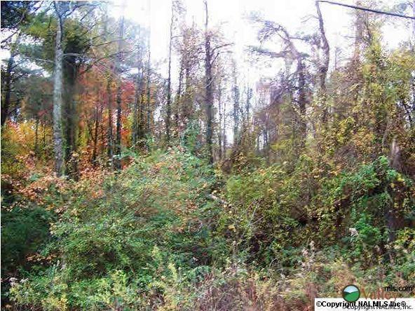 Union Hill Rd., Union Grove, AL 35175 Photo 4