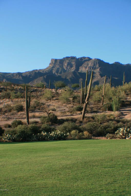 3862 S. Avenida de Angeles --, Gold Canyon, AZ 85118 Photo 29