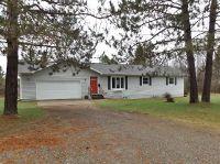 Home for sale: 1907 Iron Lake Rd., Iron River, MI 49935