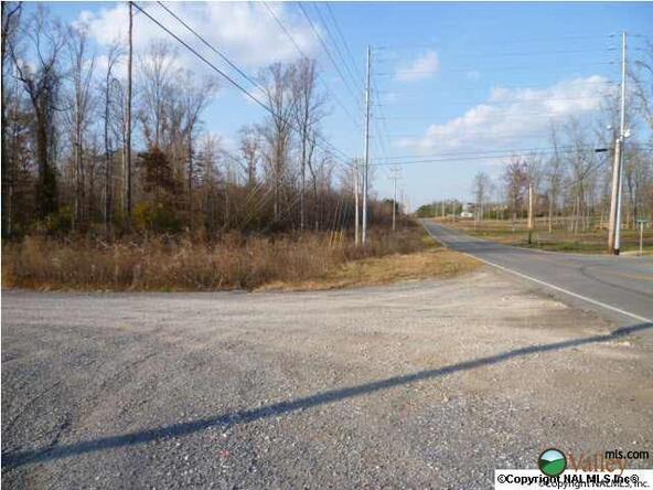 Industrial Blvd., Rainsville, AL 35986 Photo 3