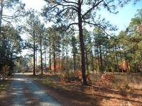Home for sale: 0 Airport Rd., Pinehurst, NC 28374