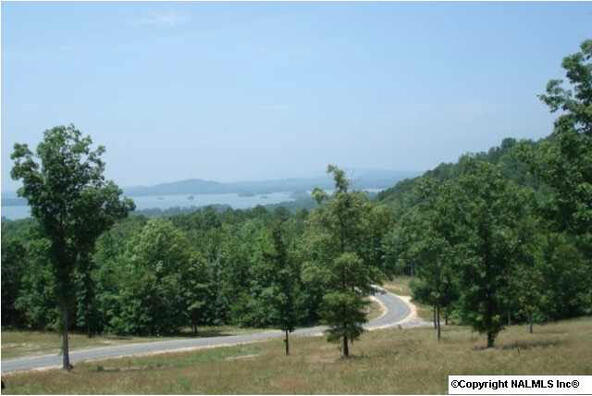 217 River Ridge Dr., Cedar Bluff, AL 35959 Photo 13