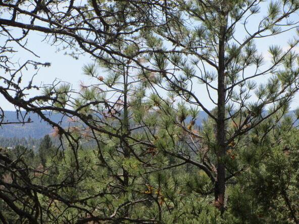 110 Chiracahua Ln., Ruidoso, NM 88345 Photo 20