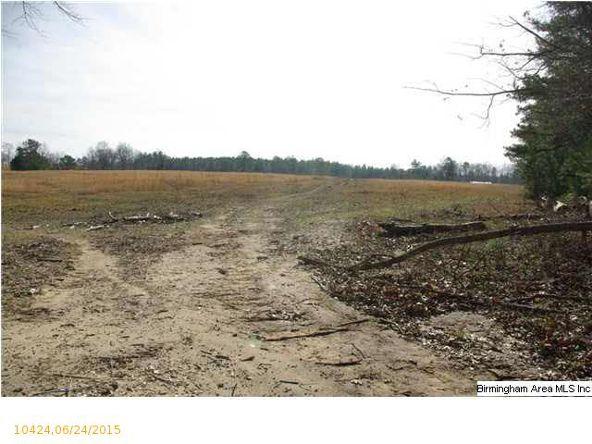 4 Horton Mill Rd., Oneonta, AL 35121 Photo 44
