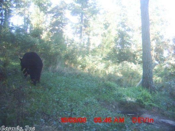 1127 Nature Dr., Saint Joe, AR 72675 Photo 29