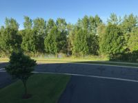Home for sale: 20116 Holister Ln., Lakeville, MN 55044