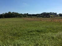 Home for sale: Lot 3 Fremont Rd., Doyle, TN 38559