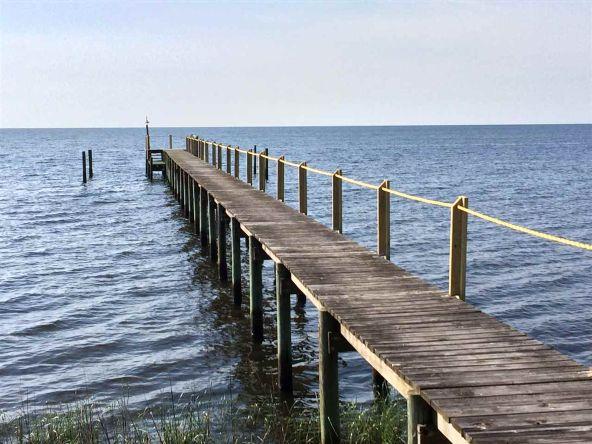 118 White Pelican Way, Carrabelle, FL 32322 Photo 7