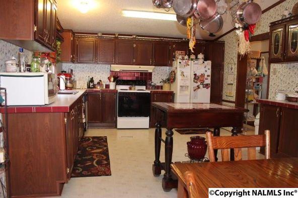 1210 County Rd. 23, Geraldine, AL 35974 Photo 11