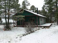 Home for sale: 2063 Elkhorn Draw, Overgaard, AZ 85933