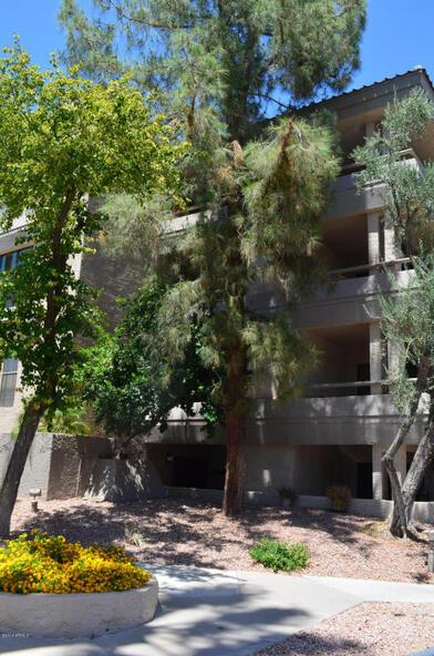 5124 N. 31st Pl., Phoenix, AZ 85016 Photo 45