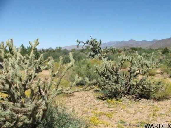 3578-B E. Desert Willow Dr., Yucca, AZ 86438 Photo 10