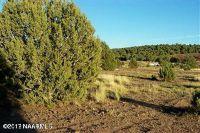 Home for sale: 851 W. Foothills Dr., Ash Fork, AZ 86320