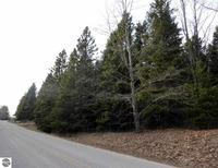 Home for sale: Lot 13 Spruce Ridge, Bear Lake, MI 49614