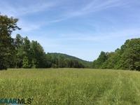 Home for sale: 32-4 Chris Greene Lake Rd., Charlottesville, VA 22911