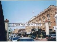 Home for sale: 7109 Rose Quartz Ct., Fort Worth, TX 76132