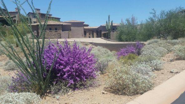 9438 N. Fireridge Trail, Fountain Hills, AZ 85268 Photo 59