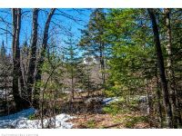 Home for sale: 0 Sunday River Rd., Newry, ME 04261