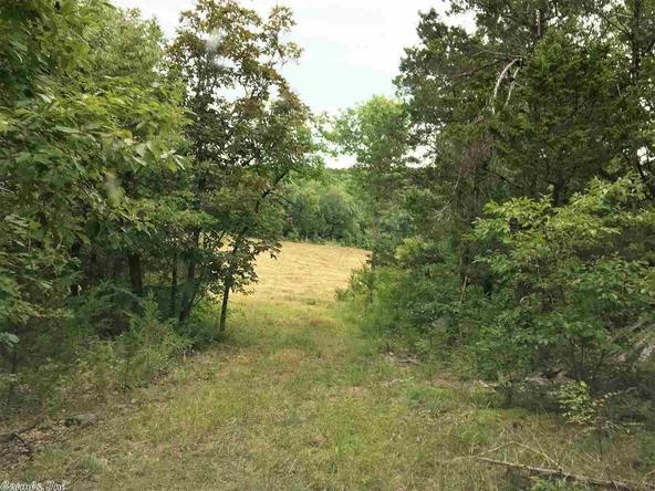 1252 Nc 3600 Rd., Western Grove, AR 72685 Photo 35