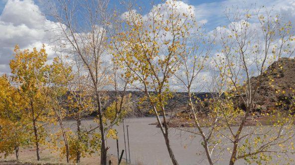 99 River Springs Ranch Unit 3 --, Saint Johns, AZ 85936 Photo 35