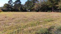 Home for sale: 325 Meadow Ridge Rd., Dunn, NC 28334