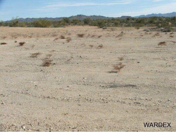 16775 S. Douglas Ln., Yucca, AZ 86438 Photo 10